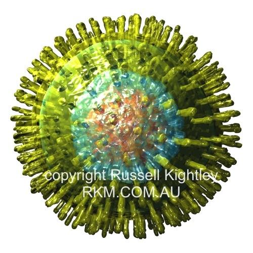 herpes virus 1. Herpes Virus - virion on white