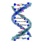 DNA negative