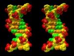 DNA helix negative image