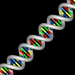 DNA simplified graphic diagonal view of helix